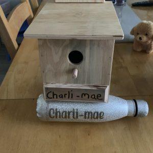 My bird box