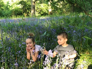 Playing in the bluebells