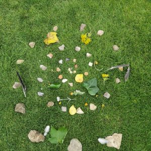 Harry's Andy Goldsworthy picture