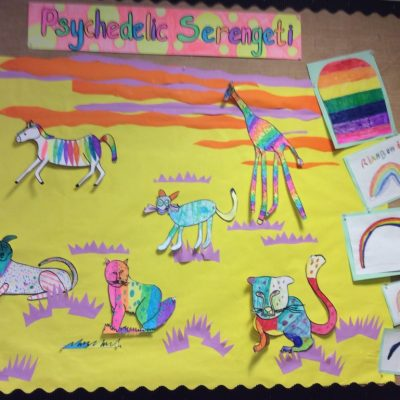 Colours - our Psychedelic Serengeti display